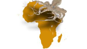 montage-pieuvre-afrique_0